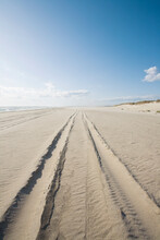 Usa, Massachusetts, Nantucket Island, Madaket Beach, 4x4 Vehicle Tire Tracks On Beach