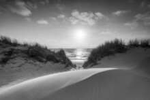 Sand Dune Near The Beach In Black And White