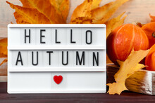 Hello Autumn. Ripe Pumpkins And Yellow Leaves In Wooden Box. Harvest And Thanksgiving Concept. Halloween Celebrations.