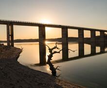 Closeup Shot Of A Sunset Over A Bare Tree And Long Bridge Reflecting In A Clear Lake