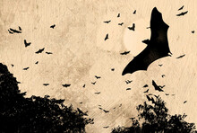 Horror And Halloween Concept - Bats Flying Over Spooky Woods