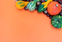 Autumn Side Border Of Various Decorative Pumpkins And Chestnuts On A Orange Background. Top View With Copy Space.