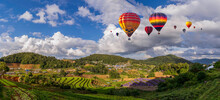 Hot Air Balloons Over Flower And Vegetable Garden At Doi Monjam Village In Chiang Mai, Thailand