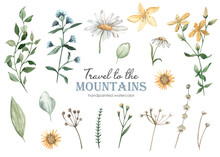 Watercolor Set Travel To The Mountains With Flowers, Oregano, St. John's Wort, Tansy, Dried Flowers, Chamomile, Leaves, Grass