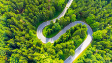 Asphalt Road Serpentine In The Forest. Aerial View From Drone.