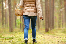 Season And Leisure People Concept - Young Woman With Mushrooms In Basket Walking Along Autumn Forest