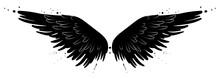 Beautiful Black Raven Or Devil Wings, Vector