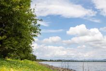 渡良瀬遊水地 夏の青空と水面