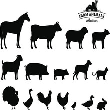 Vector Farm Animals Silhouettes Isolated On White Vector Design Vector Illustration Print Poster Wall Art Canvas