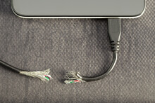 Gnaw Or Cut Out Damaged Peripheral Wire ,trouble Connection Transfer On Mobile Device. Concept Broken Or Lack Of Electric Power Supply