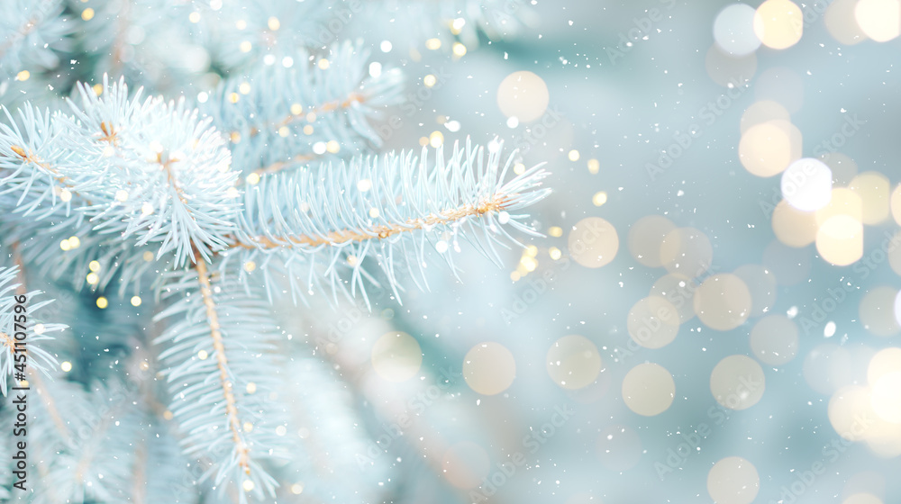 Close up photo of blue Christmas tree background outdoor with lights bokeh around. Christmas atmosphere