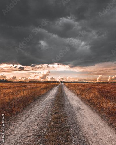 Krajobraz przed burza