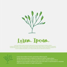 Plant Illustration Design Template, Suitable For Beauty And Agriculture Brands