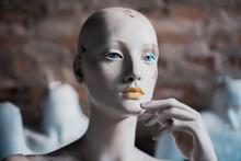 Old Female Display Mannequin Portrait