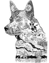 Australian Dog Blended Images Of Australia With Details