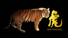 Beautiful New Year Greeting Card With Tiger For 2022