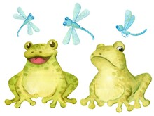Set Of Two Cute Frogs With Different Characters And Delicate Blue Dragonflies
