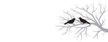 Birds And Winter Tree Branch
