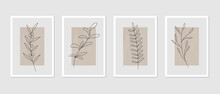Abstract Botanical Wall Art Decor. Botany - Plants, Leaves, Branches Line Art Drawing On Abstract Backgrounds. Minimal Art Design Abstract Backdrop