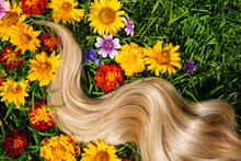 Blonde Hair Lock. Strand Of Honey Blonde Hair On Green Grass Background, Top View. Hairdresser Service, Hair Strength, Haircut, Dying Or Coloring, Hair Extension, Treatment Concept