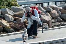 Ein Fotograf Fotografiert Eine Räuberische Möwe In Einem Fischerhafen An Der Ostsee