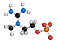 Creatinol-O-Phosphate Molecule, Illustration