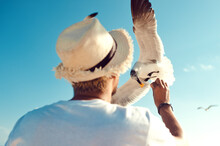 Tourist Man Feeding Seagull On The Beach. Young Male With Straw Hat, Gives Nachos To Flying Seabird Against Clear Blue Amazing Sky