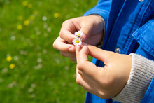 Crop Woman Touching Blooming Flower On Lawn