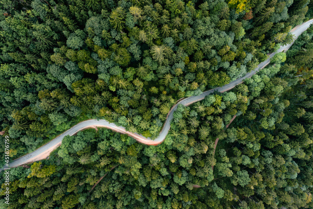 Backlights of a driving car in a curvy road as long exposure from a drone, having a trip to a green summer forest at the evening.