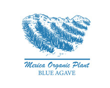 Mexican Landscape Of Blue Agave Fields. Organic Plant For Tequila And Other Products. Vector Illustration For Design Of Emblems, Logo.