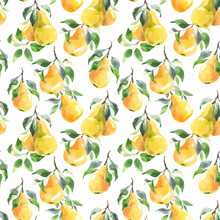 Beautiful Vector Seamless Pattern With Hand Drawn Watercolor Tasty Summer Pear Fruits. Stock Illustration.