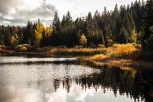 Autumn Landscape With Lake