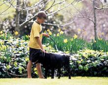 Boy Washing Black Labrador Dog With Hose In Springtime Garden