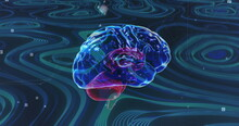 Image Of Transparent Blue Brain Rotating On Green Background With Flashing Points Of Light
