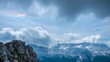 Steinbocks In The Julian Alps