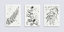 Trendy Set Of Abstract Black White Leaves And Abstract Forms. Minimal Botanical Wall Art. Mid Century Modern Graphic. Plant Art Design For Social Media, Blog Post, Print, Cover, Wallpaper. Vector