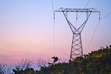 Beautiful Early Morning View Of Power Lines With Electricity Transmission Pylon Against Epic Purple Sunrise Sky In Ticknock Forest National Park, County Dublin, Ireland. Soft And Selective Focus