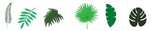 Tropical Leaf Icons. Set Tropical Leaves