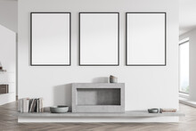 Three Posters On The White And Grey Living Room Wall With Fireplace