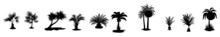 Palm Icons Set. Palm Trees Silhouettes. Tropical Leaves, Retro Palms Tree And Vintage Silhouettes Vector Illustration Set. Set Of Palm Trees Icons.