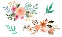 Assortment Of Watercolor Leaves And Flowers Free Vector