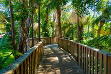 オーストラリアのゴールドコースト、バイロン・ベイ周辺の観光名所を旅行している風景 Scenes From A Trip Around Byron Bay, Gold Coast, Australia.