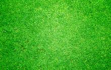 Grass Textured Background.