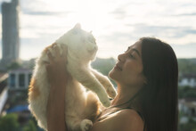 Girl With Shorthair Cat Together At Sunset