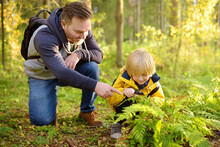Preschooler Boy And His Father Are Exploring Nature With Magnifying Glass. Little Child Is Looking On Leaf Of Fern With Magnifier. Summer Family Vacation For Inquisitive Kids In Forest. Hiking