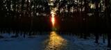 Fototapeta Na ścianę - Zachód słońca w zime,widok z lasu