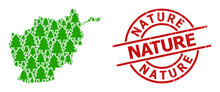Grunge Nature Stamp Seal, And Fir Tree Collage Of Afghanistan Map. Red Round Stamp Contains Nature Caption Inside Circle. Afghanistan Map Mosaic Is Created Of Fir Tree Rotated Dots.