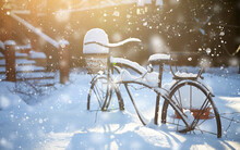 Vintage Bicycle Stand For Potted Plants. Winter Landscape With Beautiful Sunlight