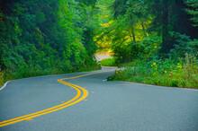 CA Highway 1