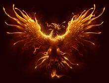 Phoenix Digital Painting. Burning Bird Phoenix Digital Painting.